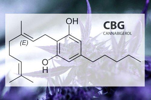 CBG Cannabigerol Molecule